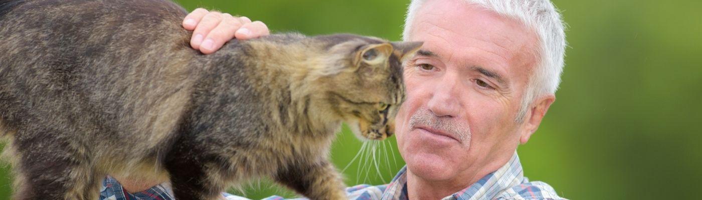 Psychotherapie mit Tieren